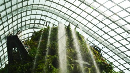 Waterfall inside Cloud Forest Singapore | Travel Inspiration | ANYDOKO