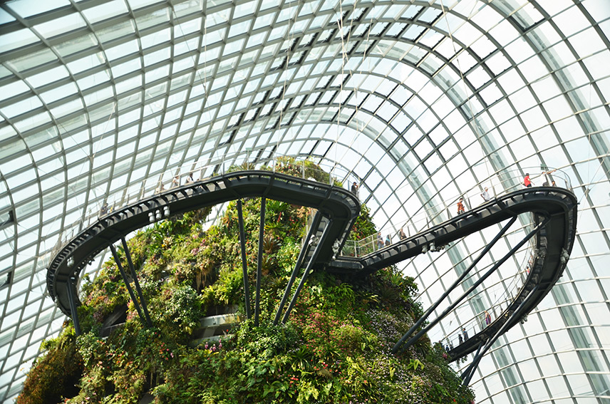 Cloud Forest Singapore Entrance | Travel Inspiration | ANYDOKO