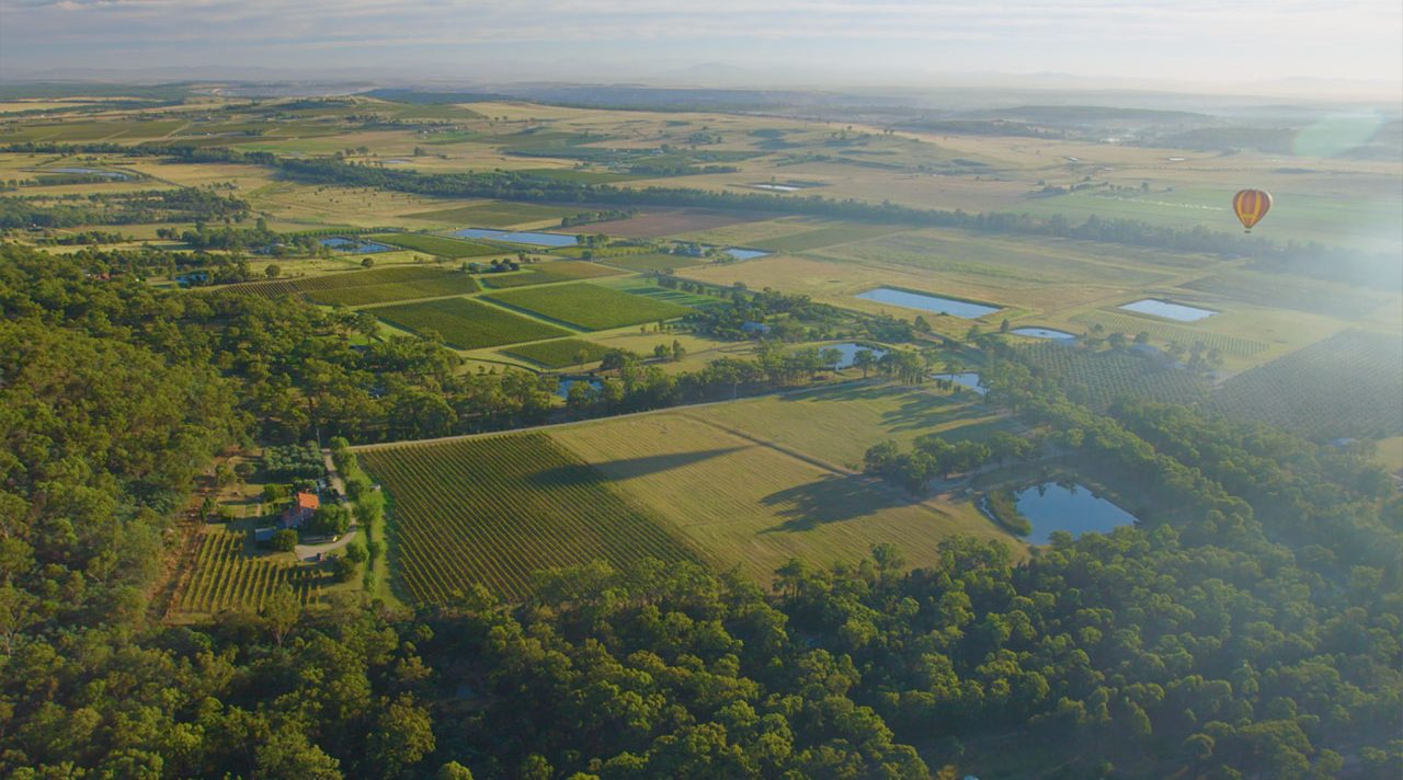 Hot Air Ballooning in the Hunter Valley   Ballooning in the Hunter Valley   Australian Adventurer  Australia Travel Video   ANYDOKO